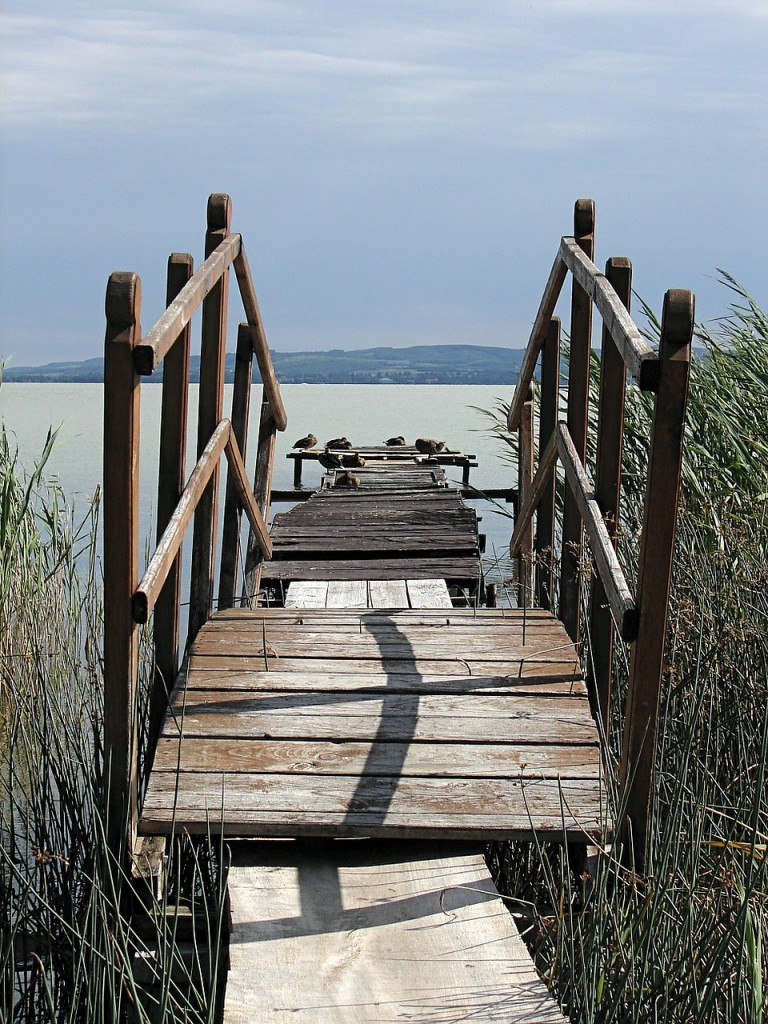 dock with lake